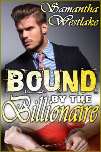 Bound by the Billionaire cover